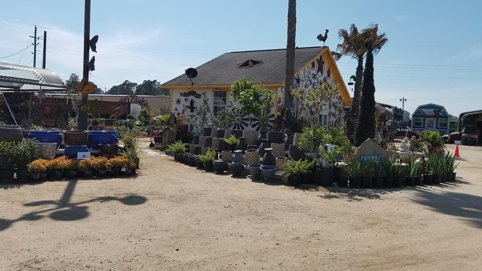 See our fantastic pottery, plants and more!