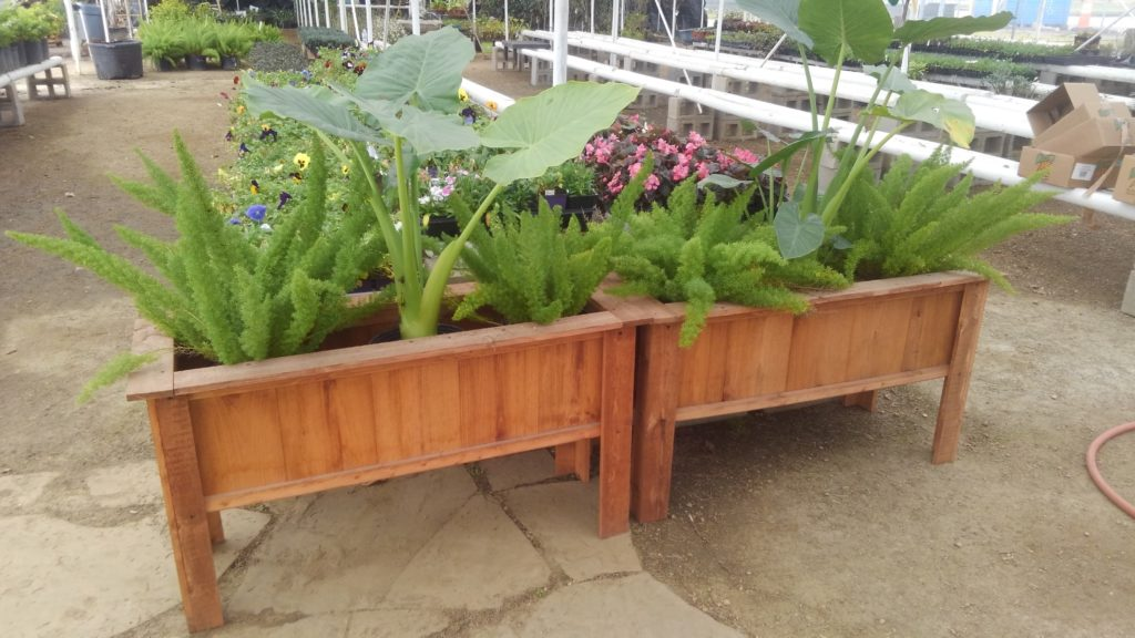 Wood planters for vegetables, flowers, shrubs and more!