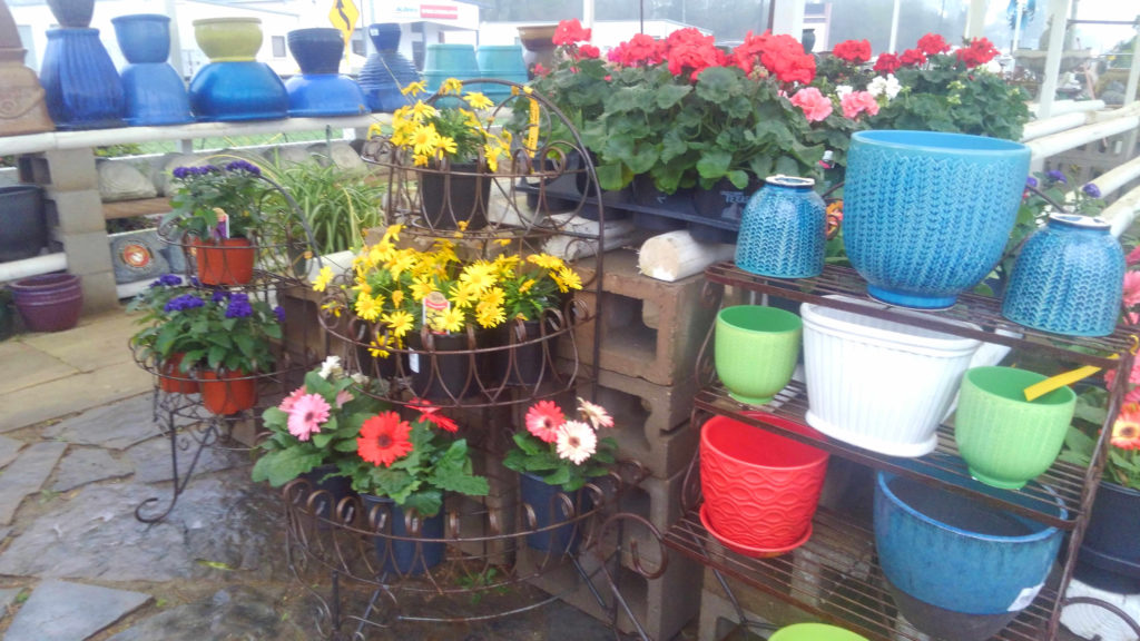 Several pots and flowers are now at Madison Gardens!  More flowers arriving this coming week!