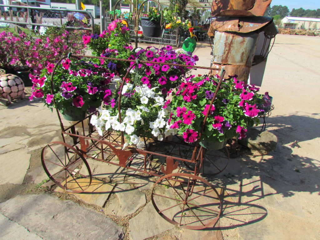 Missed the rodeo? Don't worry! We have a wagon of petunia baskets to take you there!