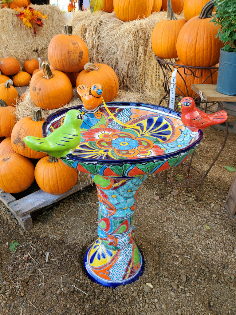 Brightly colored talavera birdbath with birds sitting on the edge!