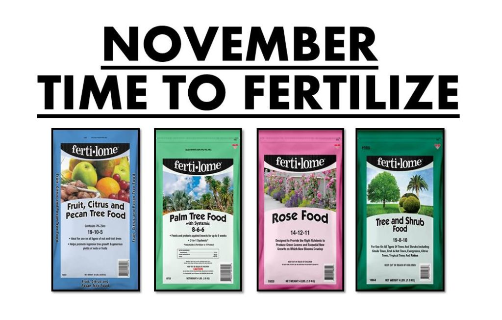 November fertilizers! Time to fertilize your roses, shrubs and trees! Even citrus, avocado and palm trees should be fertilized now!