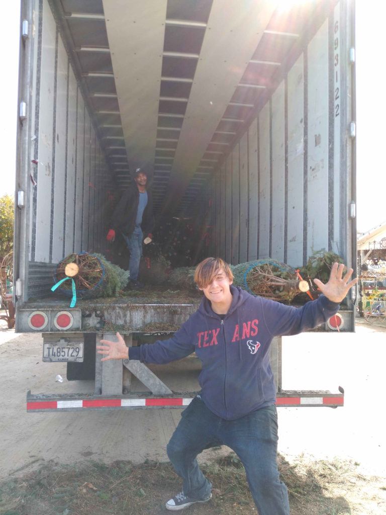 Almost done getting all the real Christmas Trees out of the truck!