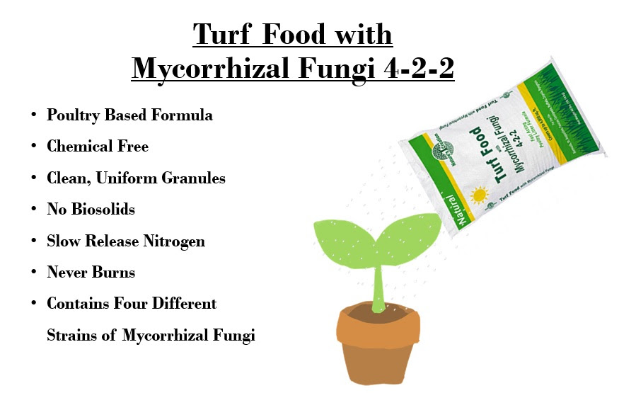 An organic fertilizer for grass! Nature's Creation Turf Food with Mycorrhizal Fungi 4-2-2.